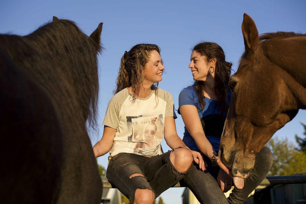 Paardenafscheid